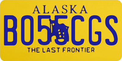 AK license plate BO55CGS