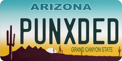 AZ license plate PUNXDED