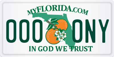 FL license plate 0000NY