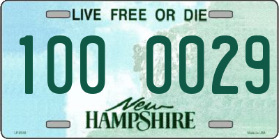 NH license plate 1000029