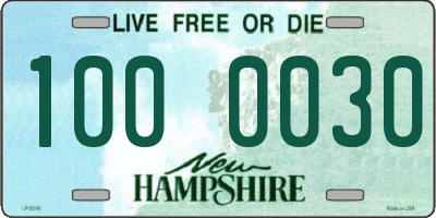 NH license plate 1000030