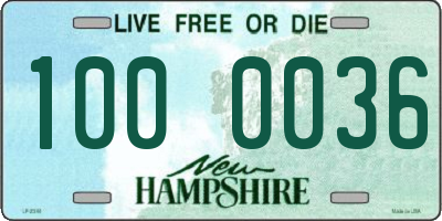 NH license plate 1000036