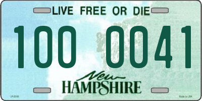 NH license plate 1000041