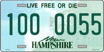 NH license plate 1000055