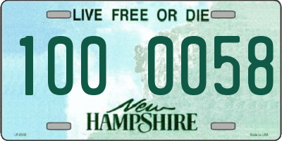 NH license plate 1000058