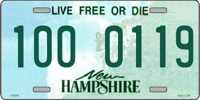 NH license plate 1000119