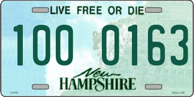 NH license plate 1000163
