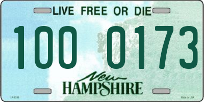 NH license plate 1000173