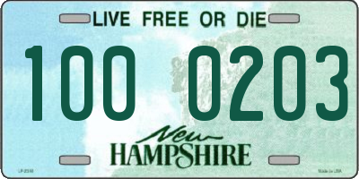 NH license plate 1000203