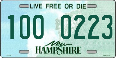 NH license plate 1000223