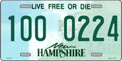 NH license plate 1000224