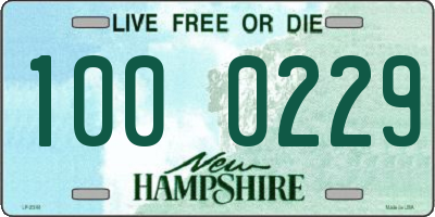 NH license plate 1000229