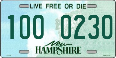 NH license plate 1000230