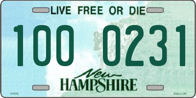NH license plate 1000231
