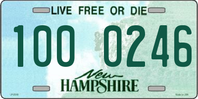 NH license plate 1000246