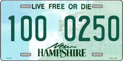 NH license plate 1000250