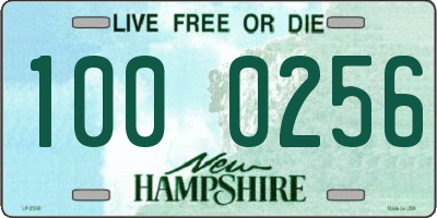 NH license plate 1000256