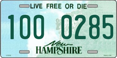NH license plate 1000285