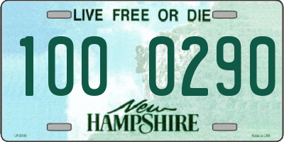 NH license plate 1000290
