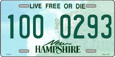NH license plate 1000293