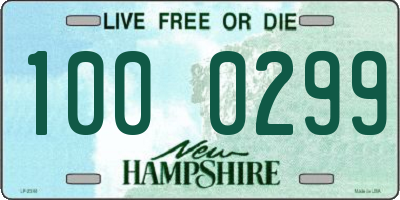 NH license plate 1000299