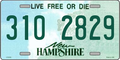 NH license plate 3102829