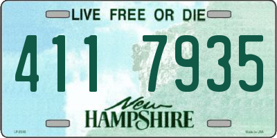 NH license plate 4117935