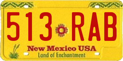 NM license plate 513RAB