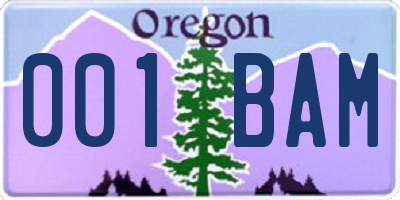 OR license plate 001BAM