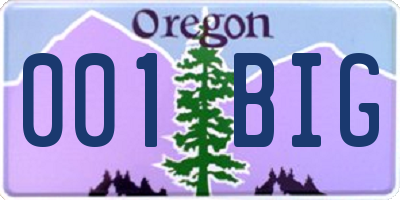 OR license plate 001BIG