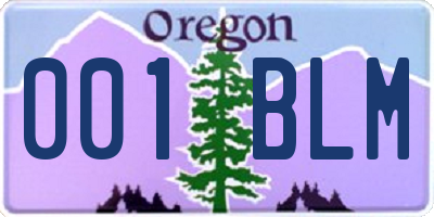 OR license plate 001BLM