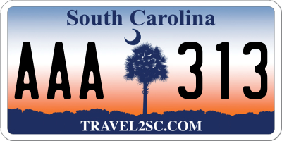 SC license plate AAA313