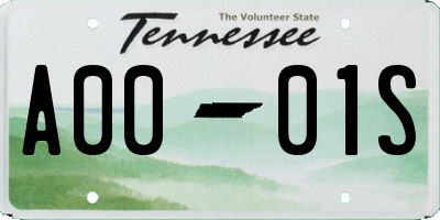 TN license plate A0001S