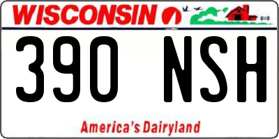 WI license plate 390NSH