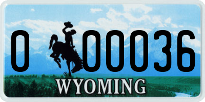 WY license plate 000036