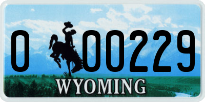 WY license plate 000229